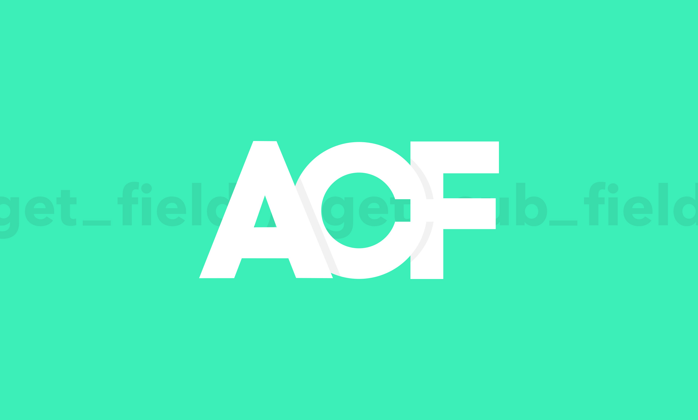 ACF Wrapper Funktion